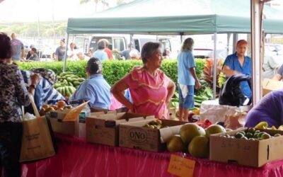 43rd Annual Maui County Senior Fair – Outside