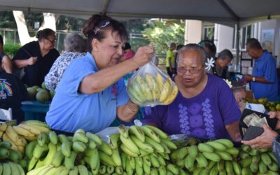 Coupons for fresh produce available for seniors